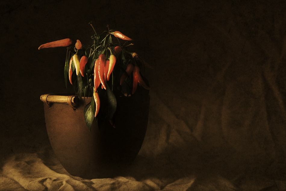 A piece of fine art art photography titled Peppers by ESPhotography