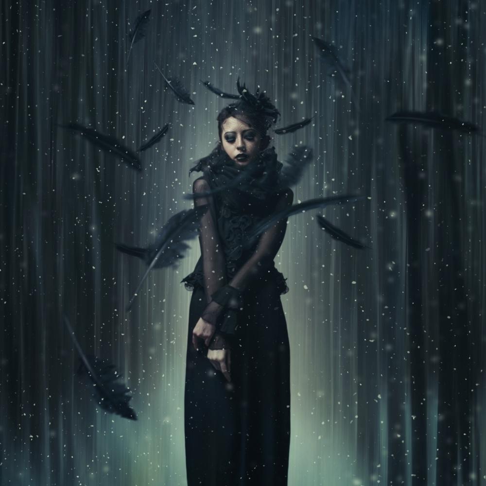 A piece of fine art art photography titled Black Swan by hardibudi