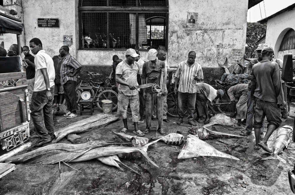 A piece of fine art art photography titled Fish Market In Zanzibar by Joxe Inazio Kuesta Garmendia