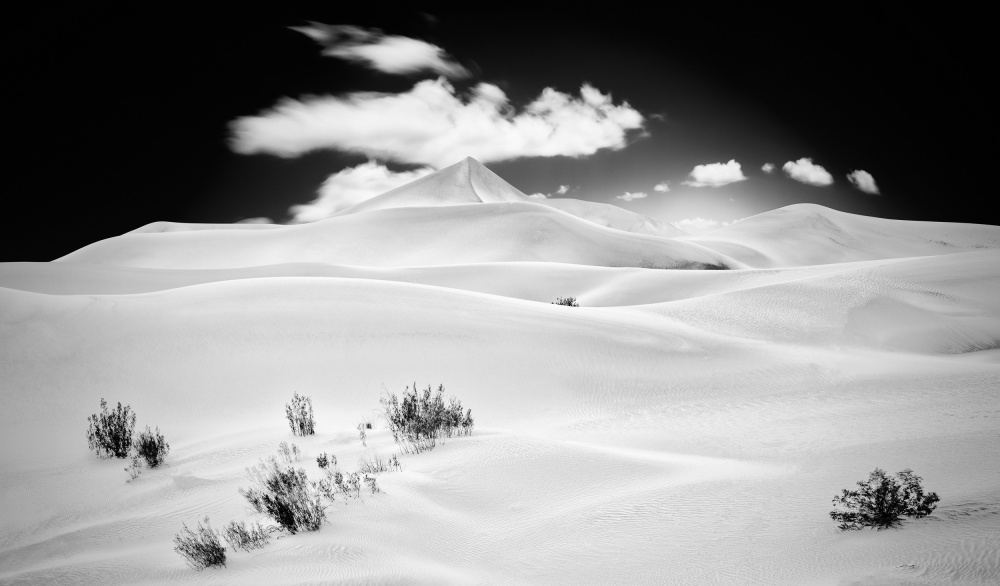A piece of fine art art photography titled Desert Utopia by Matt Anderson