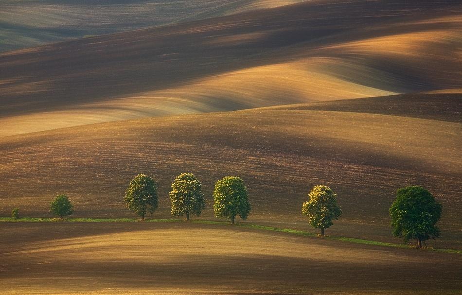A piece of fine art art photography titled Line by Krzysztof Browko