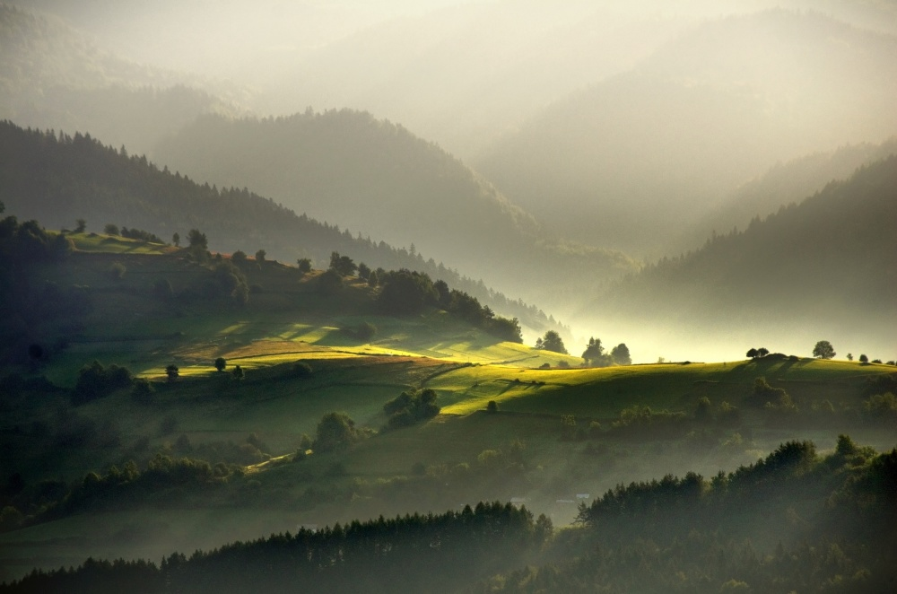 light in the green valley