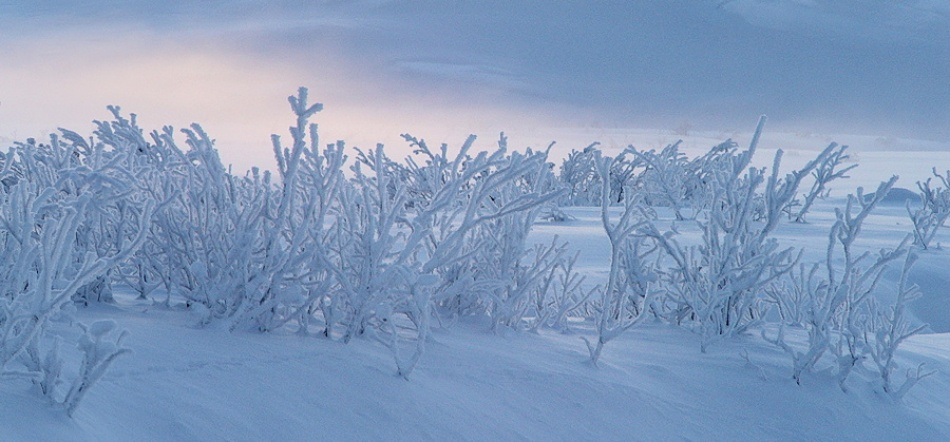 A piece of fine art art photography titled Frigid Light by Gary Minish