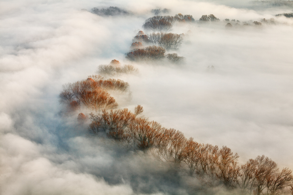 A piece of fine art art photography titled Foggy Valley by Fiorenzo Carozzi