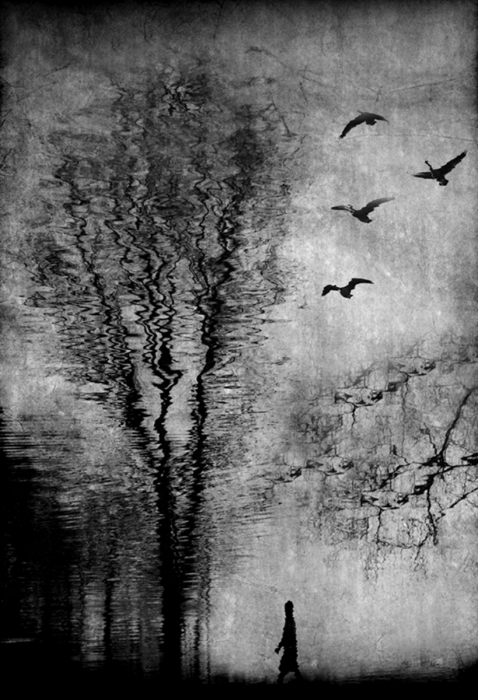 A piece of fine art art photography titled Beyond the Riverside by Anja Buehrer