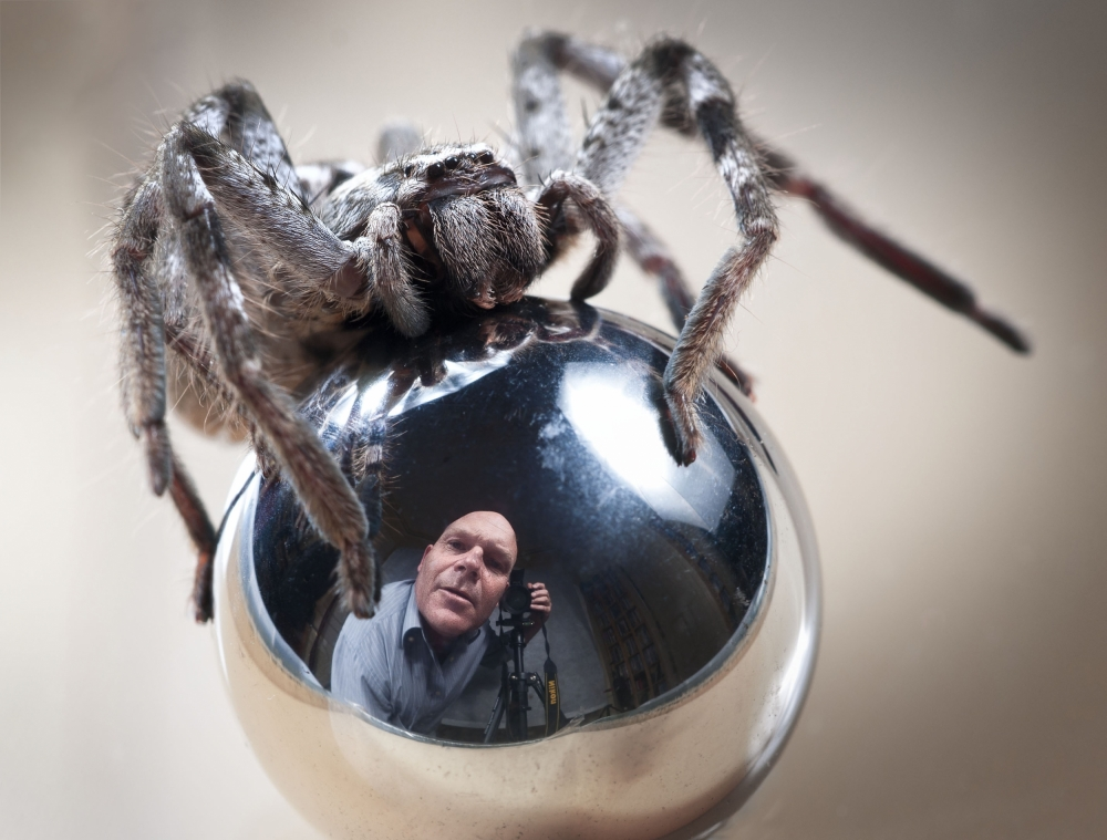 A piece of fine art art photography titled Self-Portrait With Spider by TJ Millar