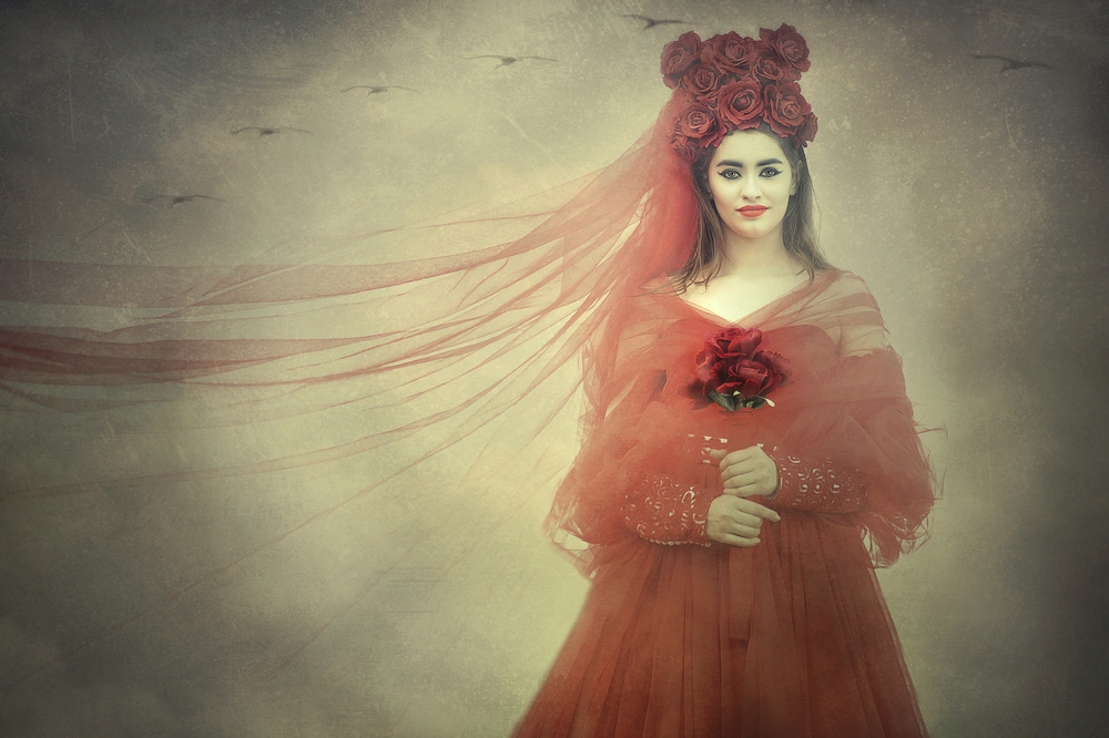 View this piece of fine art photography titled Follow your dreams by Adela  Lia Rusu