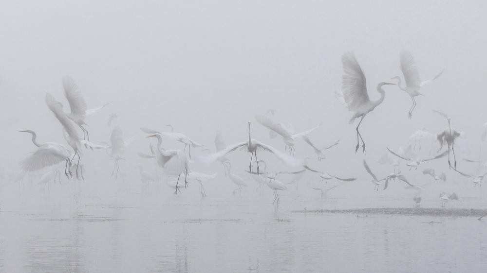 A piece of fine art art photography titled Angels by Robert Radomski
