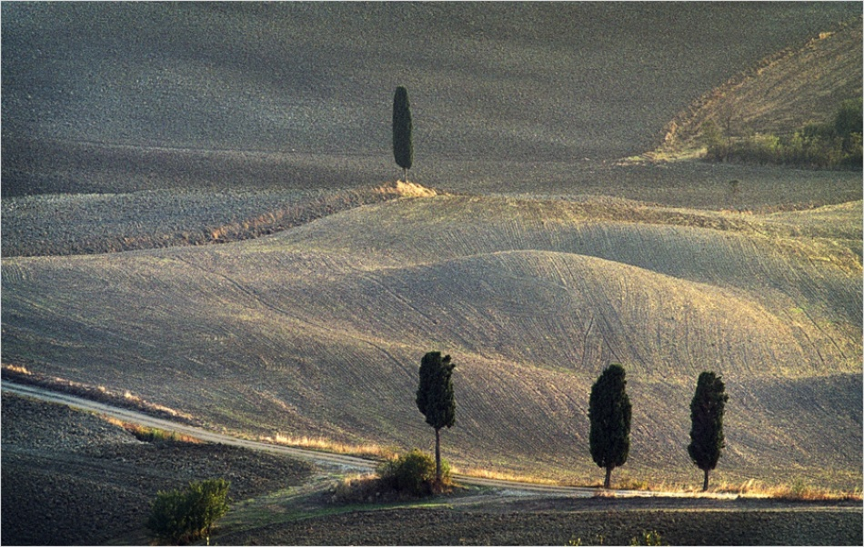 A piece of fine art art photography titled P 273  Last Rays In Tuscany by Fernand Hick