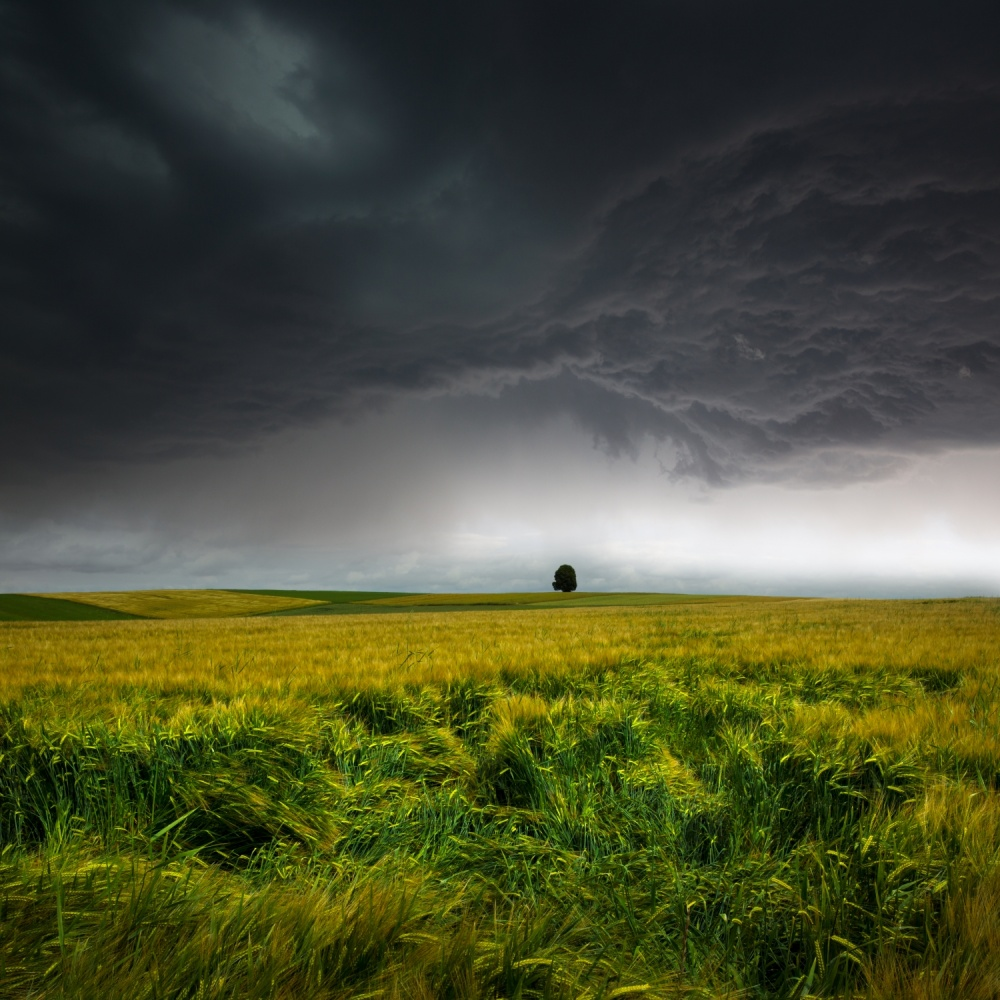A piece of fine art art photography titled Sommergewitter by Nicolas Schumacher