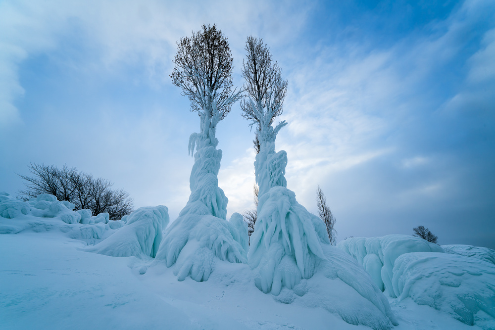 A piece of fine art art photography titled Warmth In the Cold by John Fan