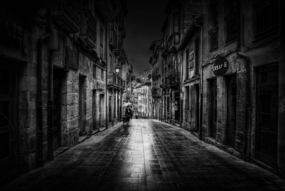 A piece of fine art art photography titled Oviedo by Jose C. Lobato