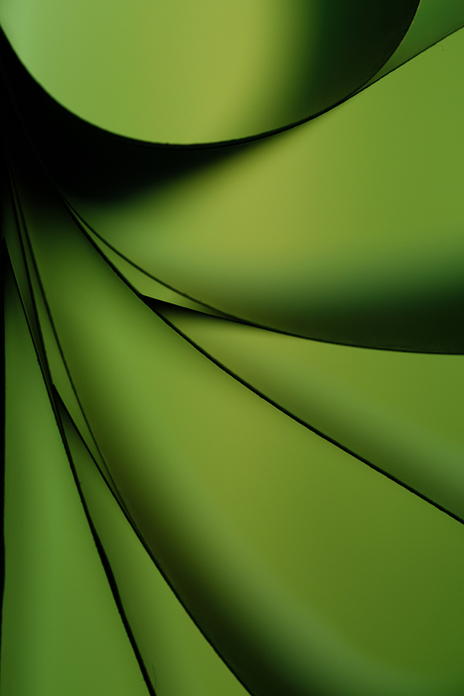 View this piece of fine art photography titled  compicion in green by j.l.sanfelix