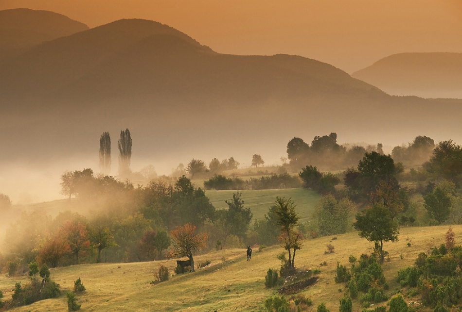 A piece of fine art art photography titled Morning In Rhodopa Mountain by Marin Marinov