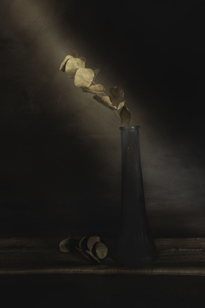 A piece of fine art art photography titled Partially Lighted by çiçek kıral