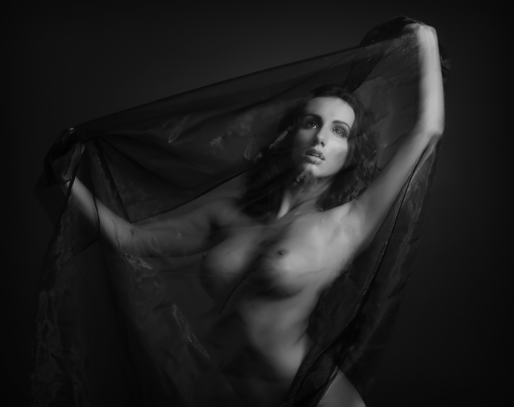 A piece of fine art art photography titled Sheer Beauty by Catchlight Studio
