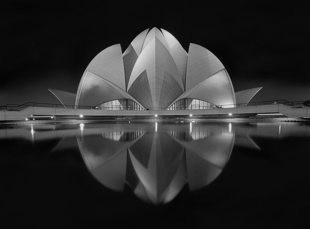 A piece of fine art art photography titled Black Contrast by nimit nigam
