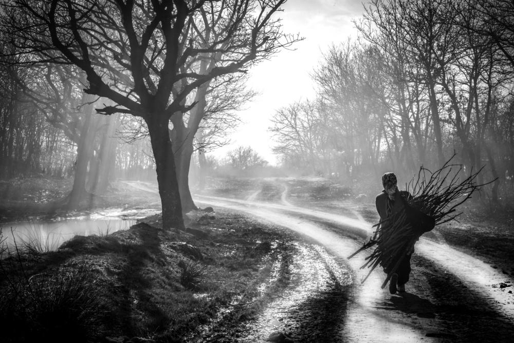 A piece of fine art art photography titled A Peasant Woman Wood Bearing by Ayşe Nur Öksüzer