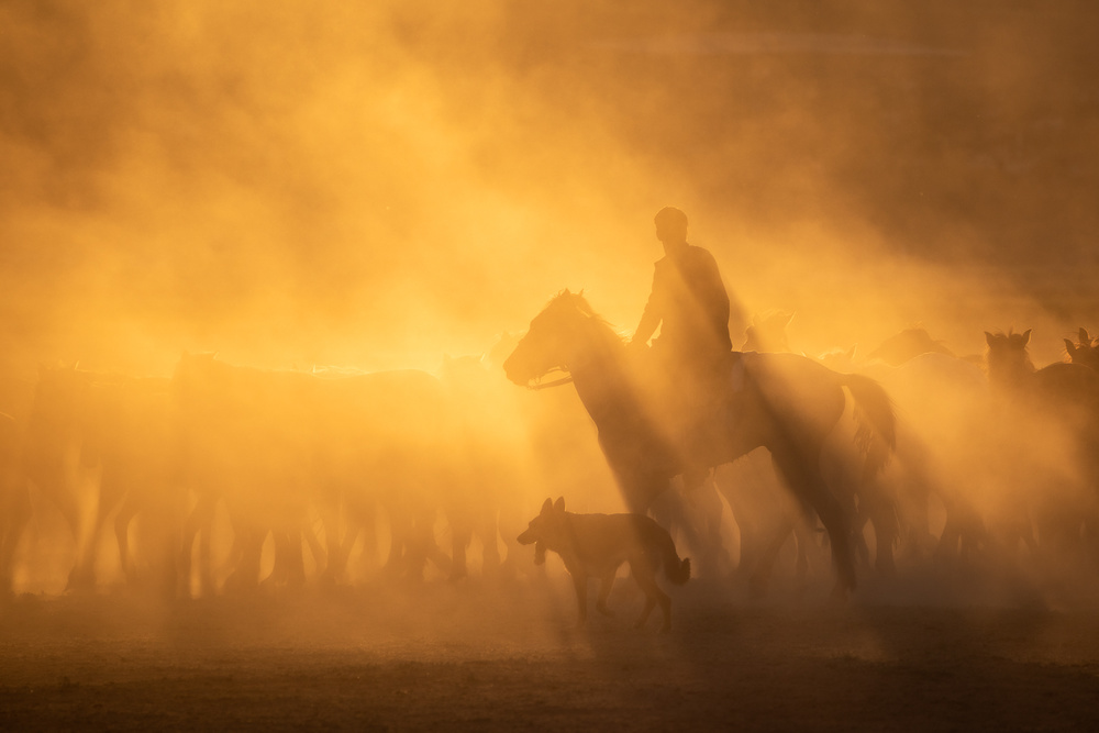 A piece of fine art art photography titled Rider by Pawel Uchorczak
