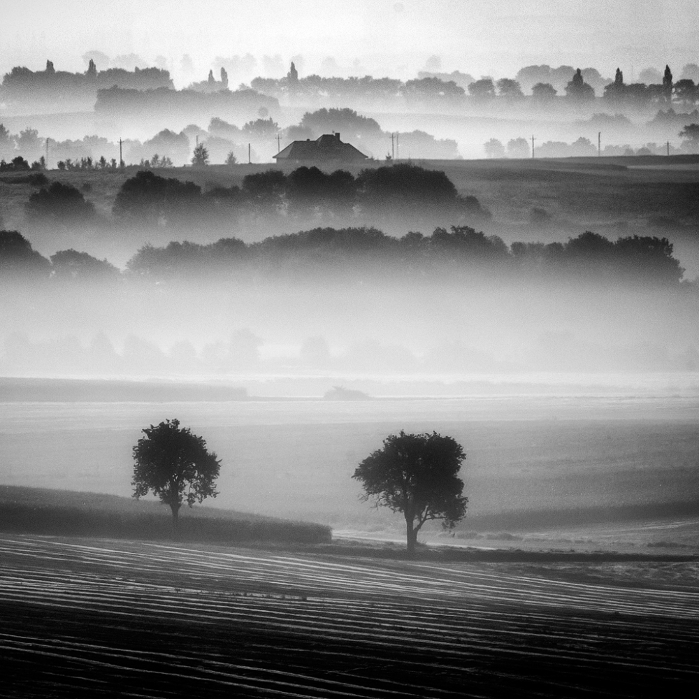 A piece of fine art art photography titled Morning Mists by Piotr Krol (Bax)
