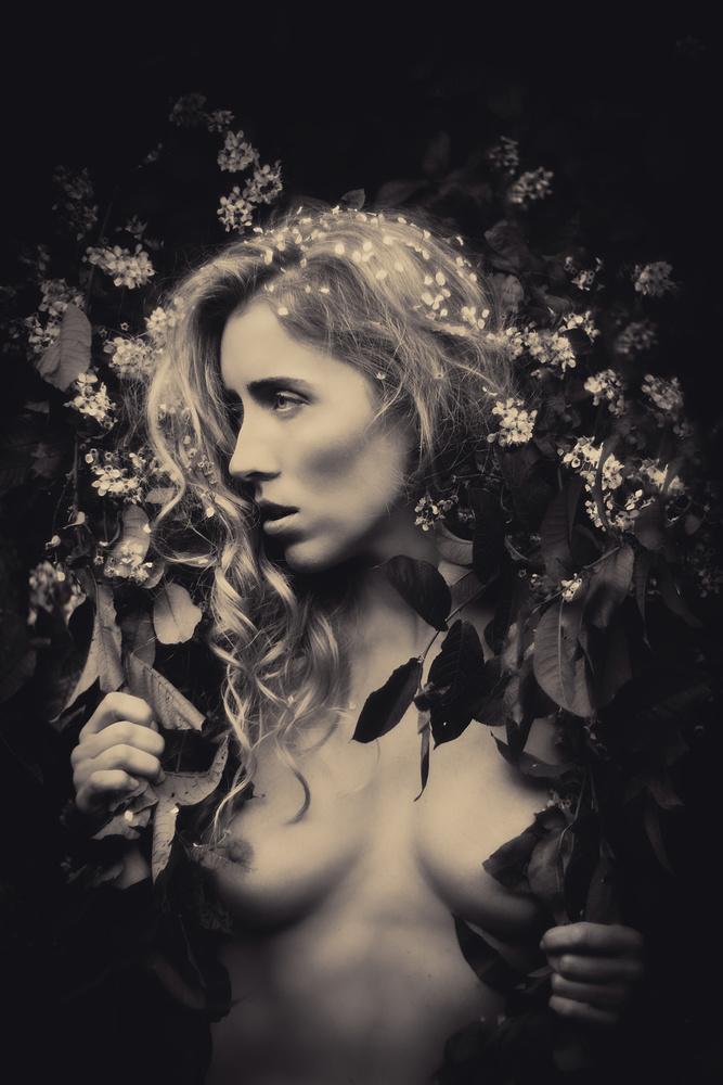 A piece of fine art art photography titled Dark Beauty by Vivian Ainsalu