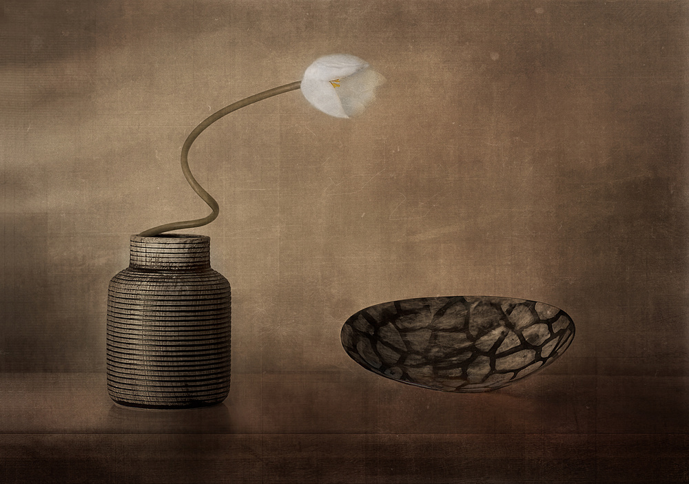 View this piece of fine art photography titled Untitled by Elena Arjona
