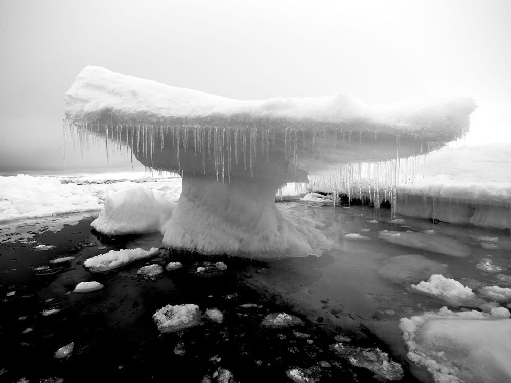 View this piece of fine art photography titled The Iced Whale Tail - Scoresby Sund Fjord Greenland by Anura Fernando
