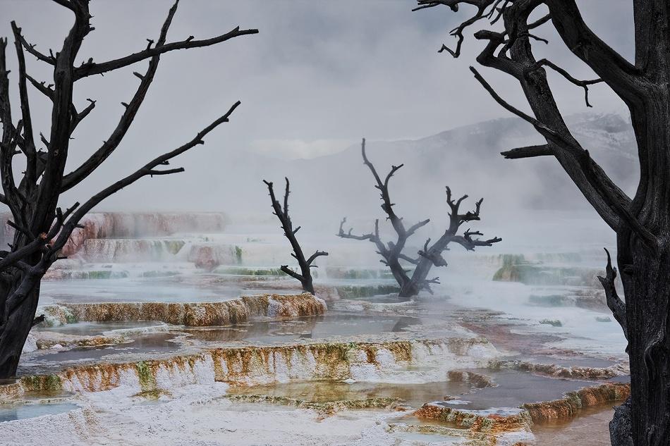 A piece of fine art art photography titled Strange Landscape by Doug Roane