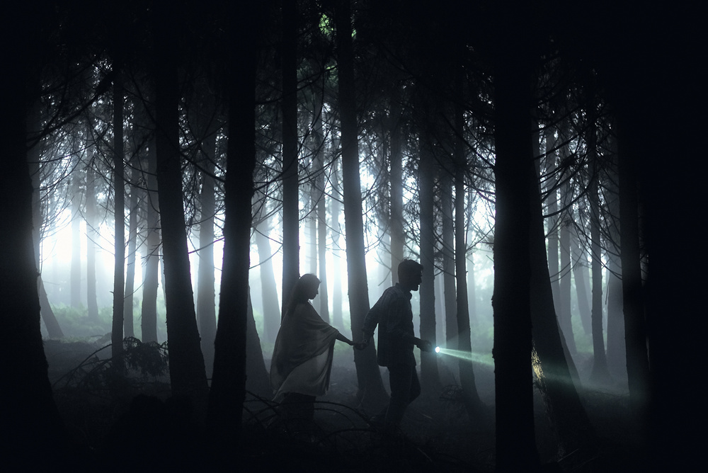 A piece of fine art art photography titled Dark Forest by Rui Caria