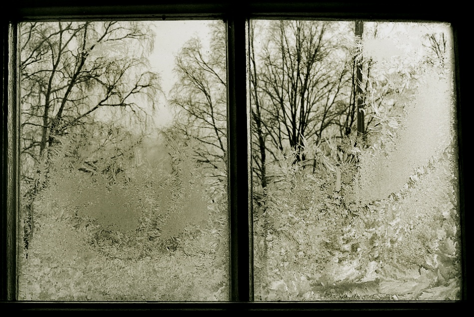 A piece of fine art art photography titled Winter by Juha Saransalmi