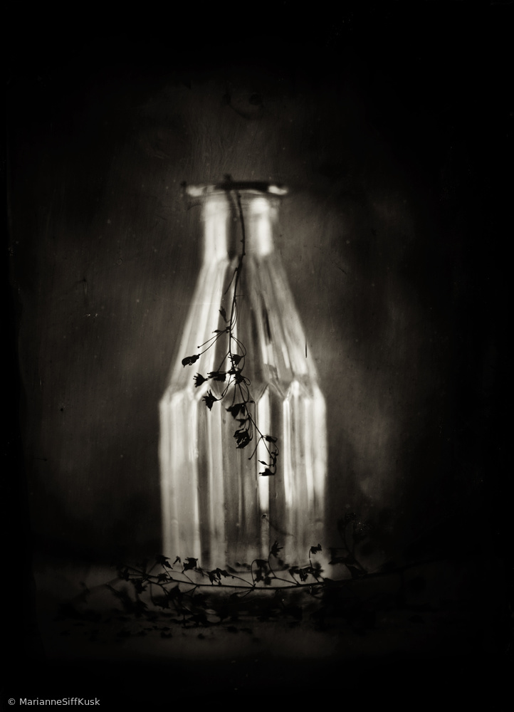 View this piece of fine art photography titled Wet Plate Collodion by Marianne Siff Kusk