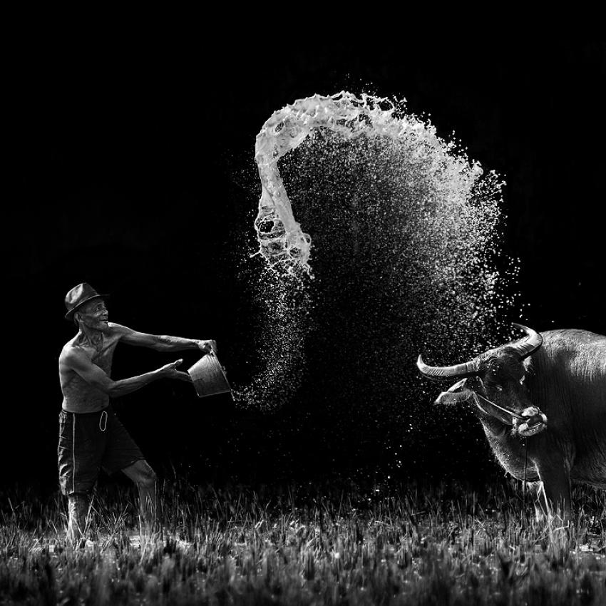 A piece of fine art art photography titled Joyful by Ario Wibisono