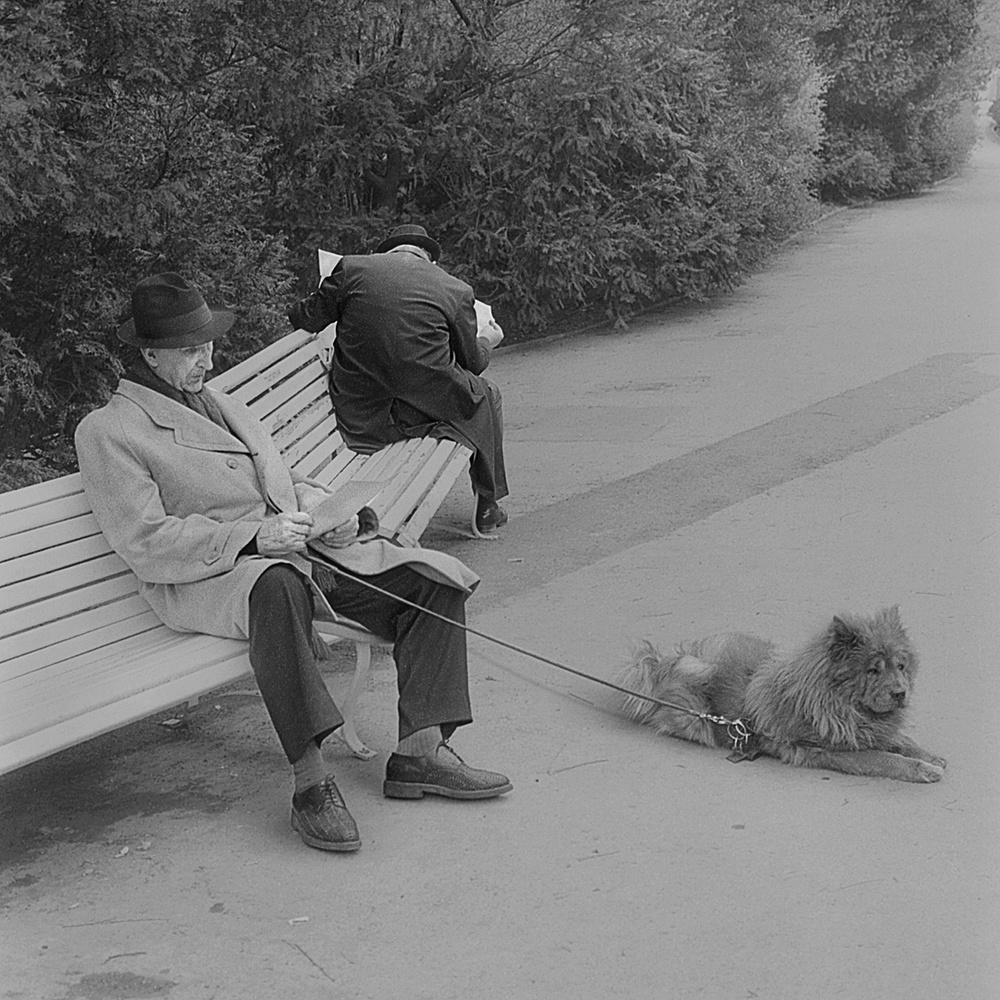 A piece of fine art art photography titled 2 Men, 1 Dog - Vienna/Austria 1973 by Robert Komarek
