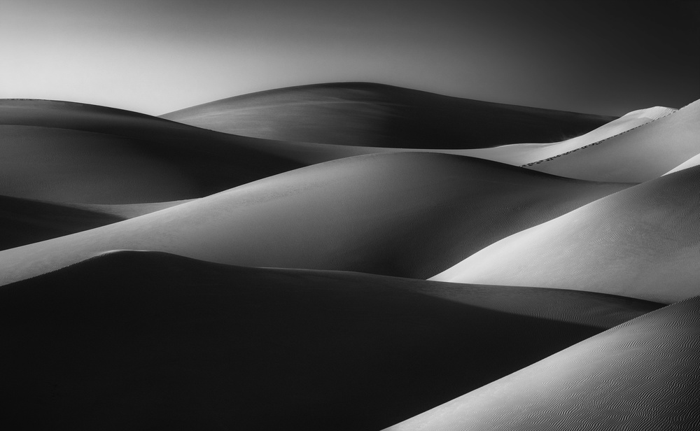 View this piece of fine art photography titled Golden Waves, Liwa by Wael Onsy