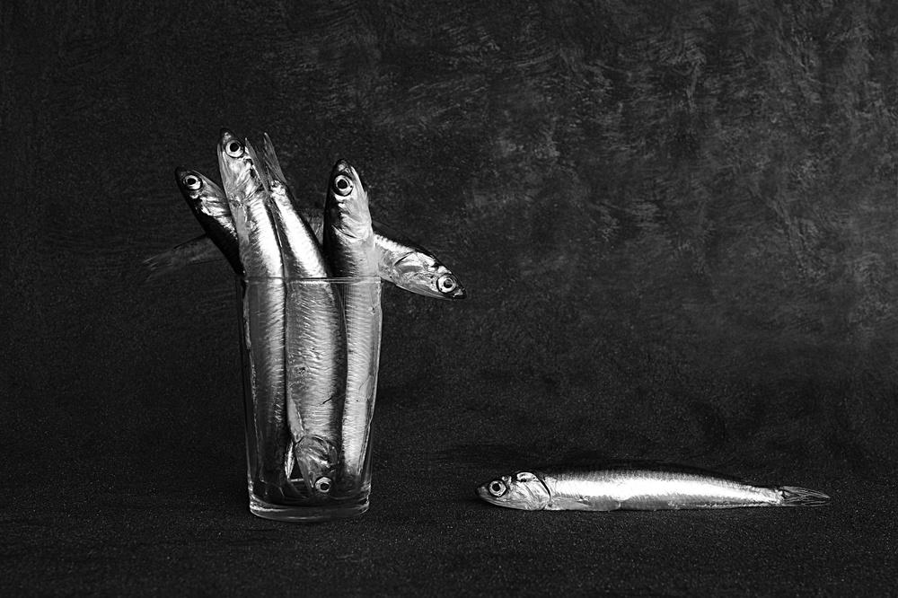 A piece of fine art art photography titled Untitled by Pedro Uranga