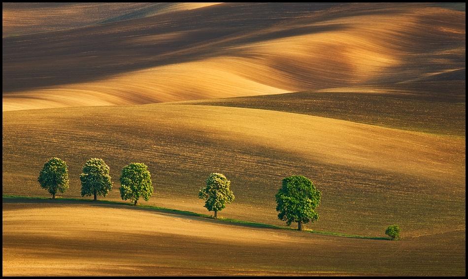 A piece of fine art art photography titled Six by Krzysztof Browko