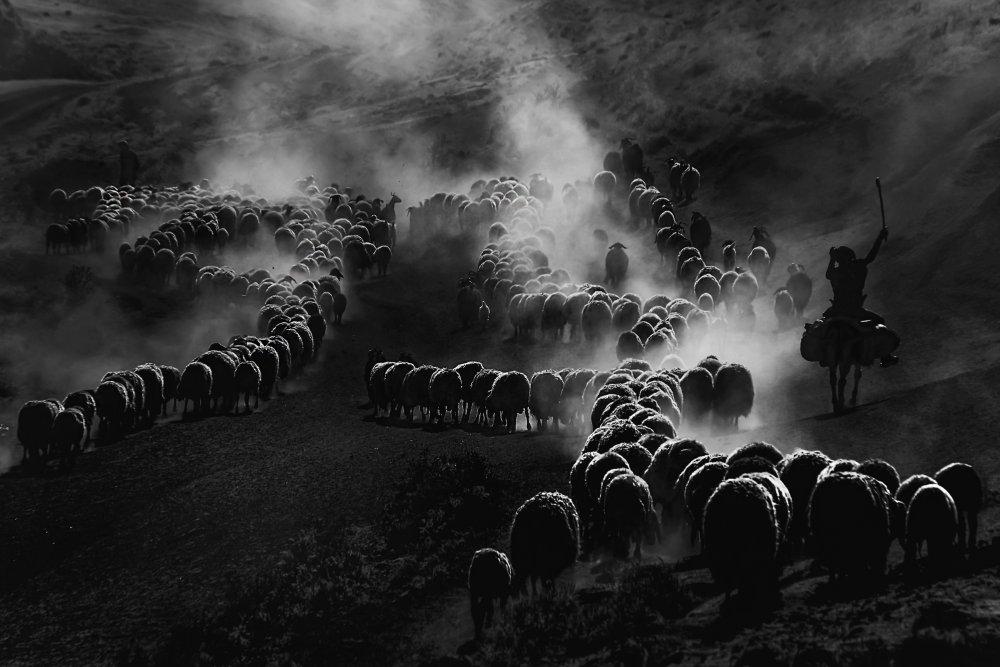 A piece of fine art art photography titled Tozlu Yolculuk by veysel erbin