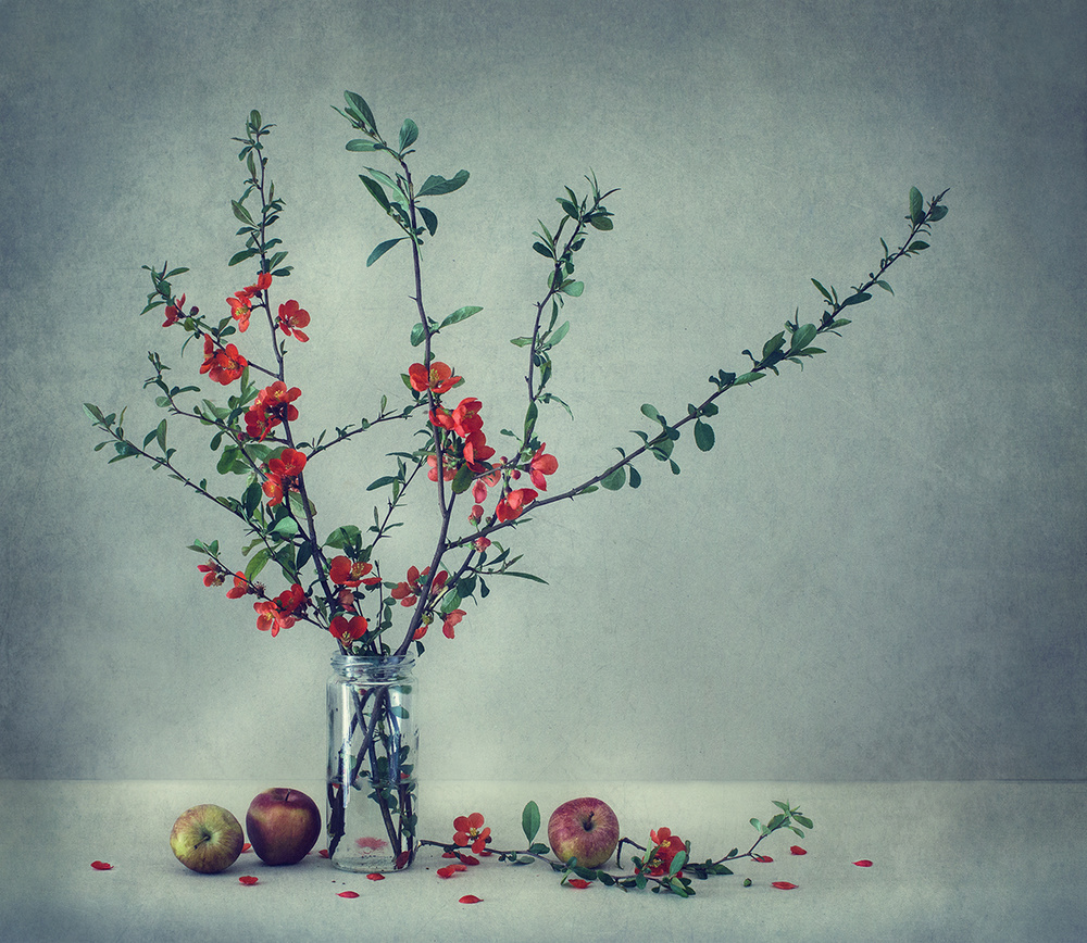 Still life with a Japanese quince