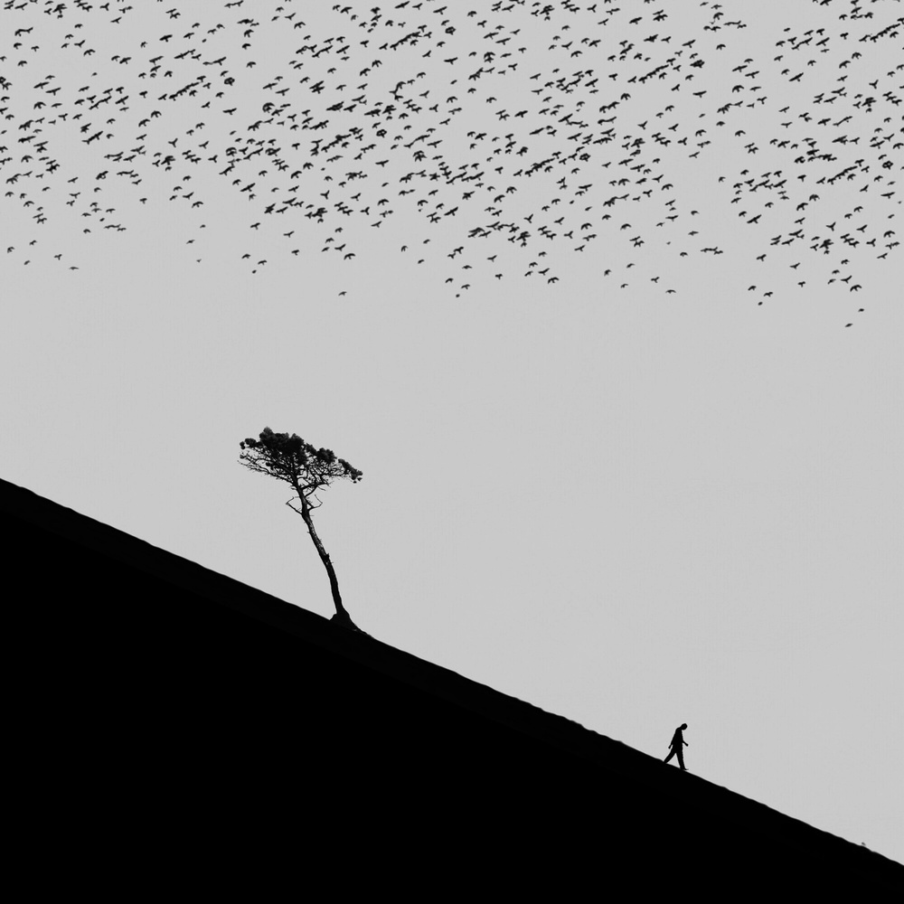 A piece of fine art art photography titled Untitled by Hadi Malijani