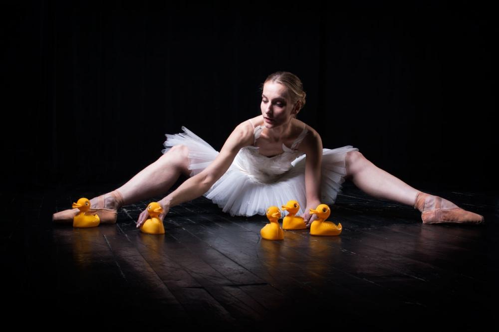 A piece of fine art art photography titled Swan Lake by SofiG - Tamara Cerna
