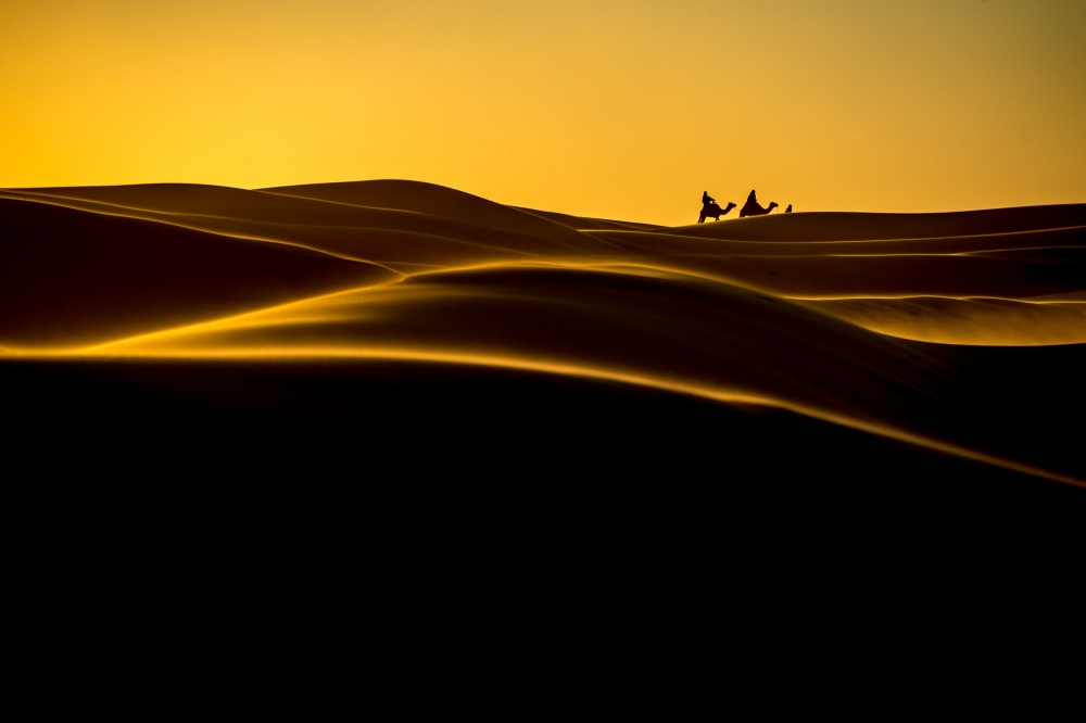 A piece of fine art art photography titled The Desert Life by Tristan Shu