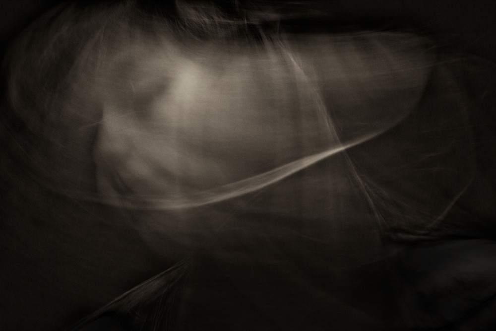 A piece of fine art art photography titled Vanishing I by Frank Dalemans