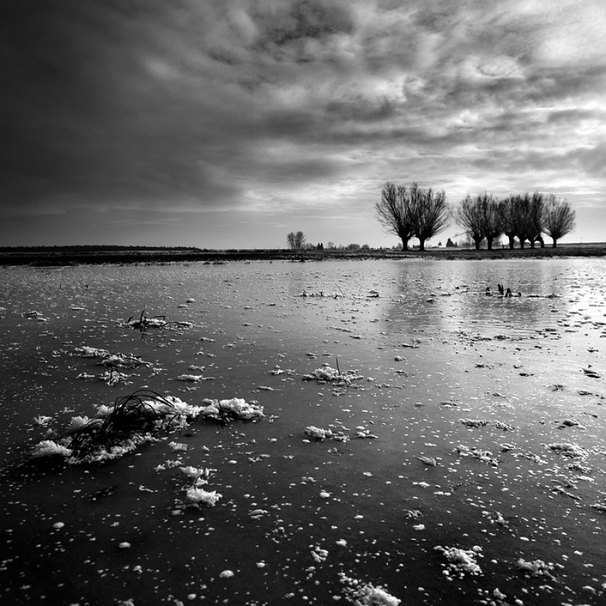 A piece of fine art art photography titled Ice Field by Adam Holweg