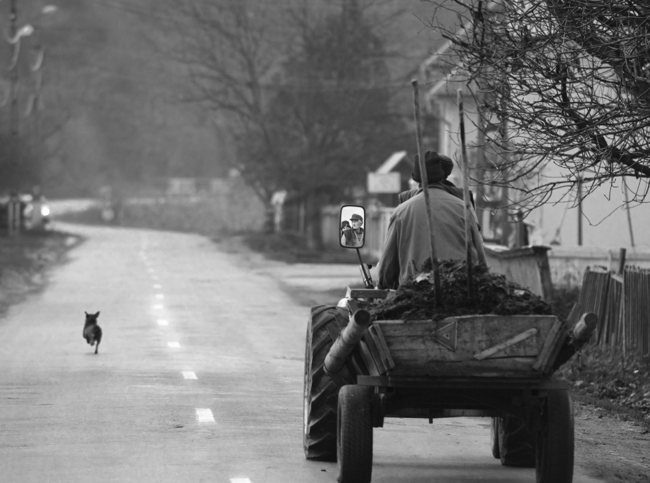 A piece of fine art art photography titled The Followers by Mihnea Turcu