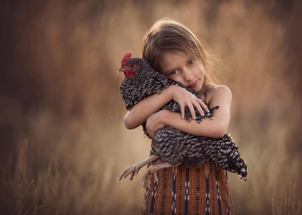 A piece of fine art art photography titled Millie & Mrs Stripes by Lisa Holloway