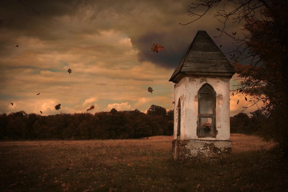 A piece of fine art art photography titled Autumn Leaves by Sandra Štimac