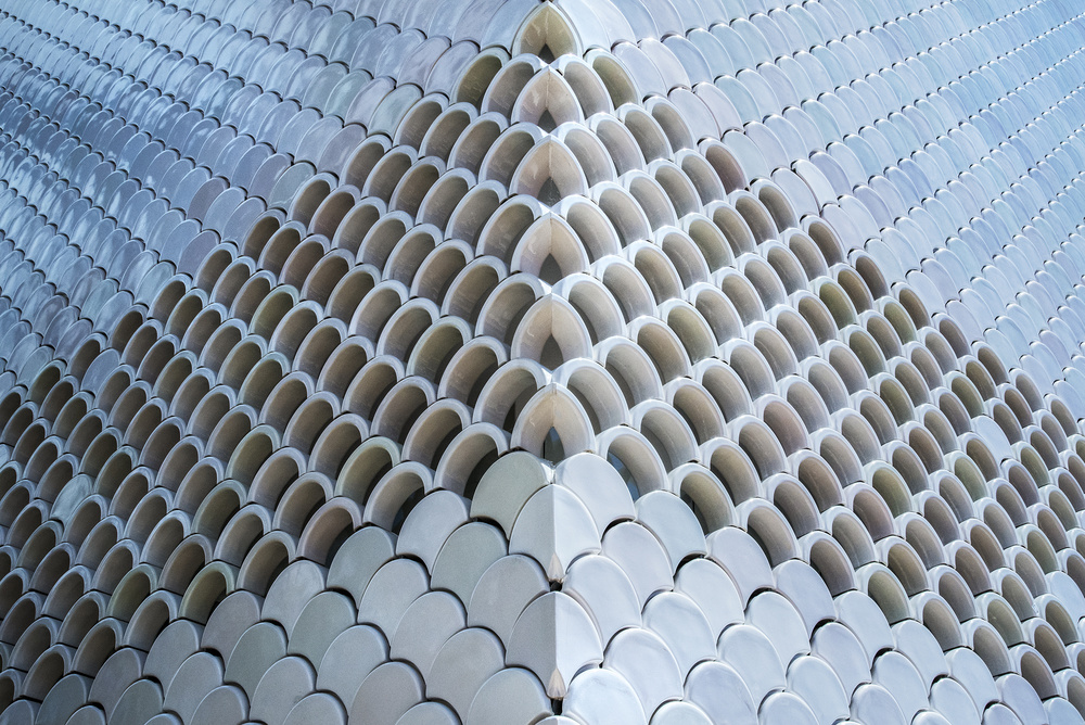 A piece of fine art art photography titled Scallops by Linda Wride