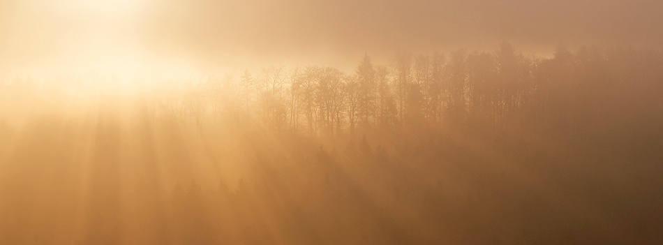 A piece of fine art art photography titled Golden Hour by Norbert Maier