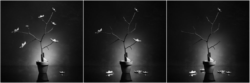 A piece of fine art art photography titled The Fall 2 by Victoria Ivanova