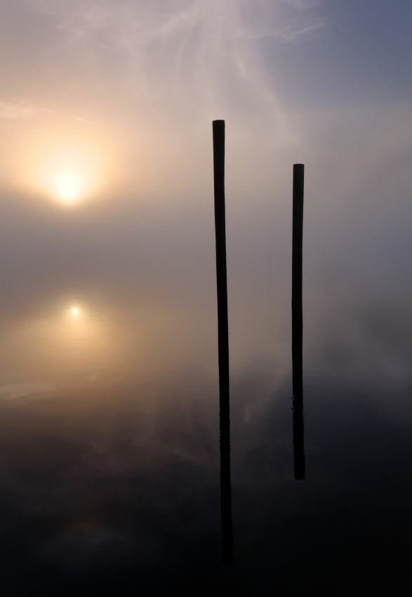 Two Pilings in the Fog